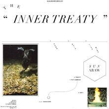 The Inner Treaty - Vinile LP di Sun Araw