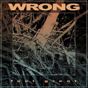 Feel Great - Vinile LP di Wrong