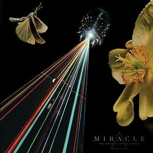 The Strife of Love in a Dream - CD Audio di Miracle