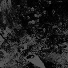 Split - CD Audio di Unearthly Trance,Primitive Man