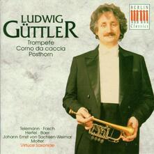 Musica per corno da caccia - CD Audio di Georg Philipp Telemann,Johann Wilhelm Hertel,Ludwig Güttler,Virtuosi Saxoniae