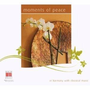 Moments of Peace. I brani orchestrali più suggestivi - CD Audio di Georges Bizet,Gustav Mahler,Jean Sibelius