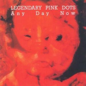 Any Day Now - Vinile LP di Legendary Pink Dots