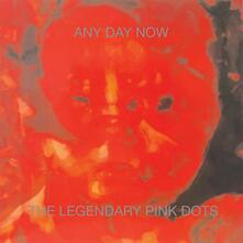 Any Day Now - CD Audio di Legendary Pink Dots