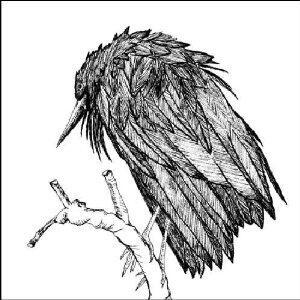 Little Sparrow - CD Audio di Spiral Joy Band