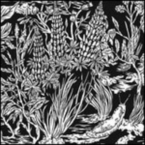 Wild Strawberries - Vinile LP di Eternal Tapestry