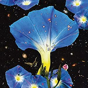 Nighttime Birds and Morning Stars - Vinile LP di Sarah Louise