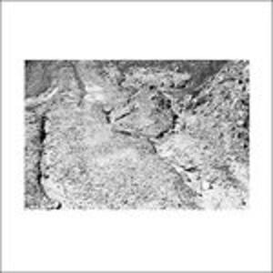 Grey - Black - Green - Vinile LP di Daniel Bachman