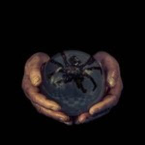 Spider's Eyes - Vinile LP di Buck Gooter
