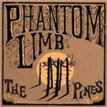 The Pines - CD Audio di Phantom Limb