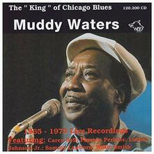 King of the Chicago Blues - CD Audio di Muddy Waters