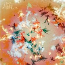Silver Wilkinson - CD Audio di Bibio