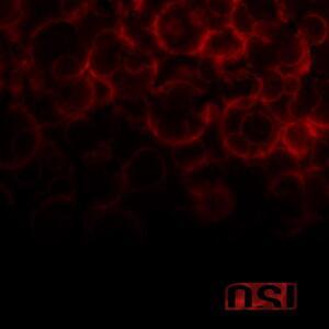 Blood - Vinile LP di OSI