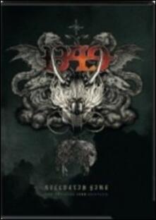 1349. Hellvetia Fire - DVD