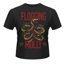 Flogging Molly. Snake