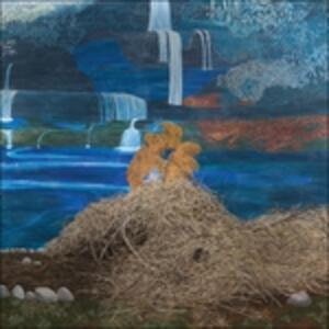 At the Dam - Vinile LP di Mary Lattimore