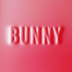 Bunny - Vinile LP di Matthew Dear