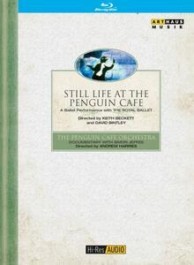 The Penguin Café Orchestra. Still Life at the Penguin Café - Blu-ray