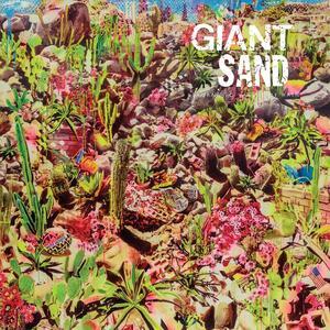 Returns to Valley of Rain - Vinile LP di Giant Sand