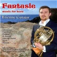 Fantasie. Music for Horn - CD Audio di Robert Schumann