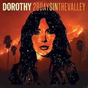 28 Days in the Valley - Vinile LP di Dorothy