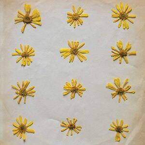 Flowers in the Spring - Vinile LP di Molochs