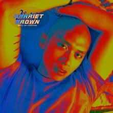 Mall of Fortune - CD Audio di Harriet Brown