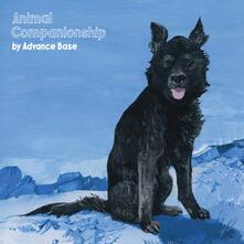 Animal Companionship - CD Audio di Advance Base