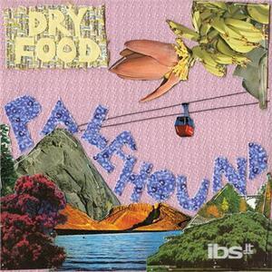 Dry Flood - Vinile LP di Palehound