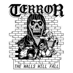 Walls Will Fall - Vinile 7'' di Terror