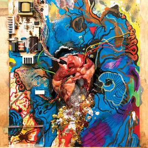 Heartless Heathen - Vinile LP di Timmy's Organism