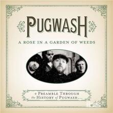 Rose In A Garden Of Weeds: A Preamble Through - CD Audio di Pugwash