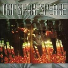 Applehead Man - CD Audio di Trip Shakespeare