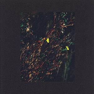 The Passenger - Vinile LP di Dark Sky