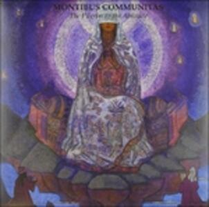 Pilgrim to the Absolute - Vinile LP di Montibus Communitas