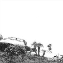 Hot Dreams - CD Audio di Timber Timbre