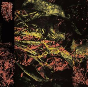 Permanent Destitution - CD Audio di Hissing