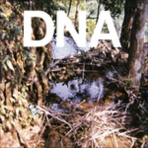 A Taste of Dna - Vinile LP di Dna