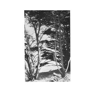 Gentle Wilderness - Vinile LP di Rick Deitrick