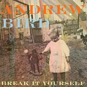 Break It Yourself - Vinile LP di Andrew Bird