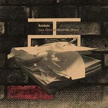 Last Days of Montrose House - Vinile LP di Anduin