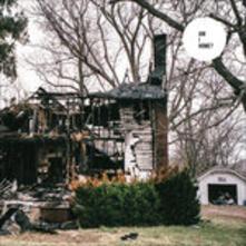 Am I Home? - Vinile LP di Skeletons