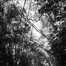 Tristes Tropiques - Vinile LP di Andrew Pekler