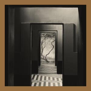 Negative Chambers - Vinile LP di Yair Elazar Glotman