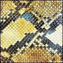 Amphetamine Ballads - Vinile LP di Amazing Snakeheads