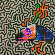 Tangerine Reef - Vinile LP di Animal Collective