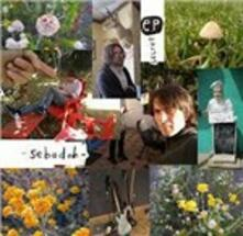 Secret Ep - Vinile 10'' di Sebadoh