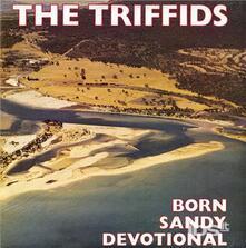 Born Sandy Devotional - Vinile LP di Triffids