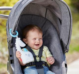 Mattel FGG90. Fisher Price. Giraffina Baby Relax - 15