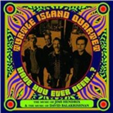 Have You Ever Been? - CD Audio di Turtle Island Quartet
